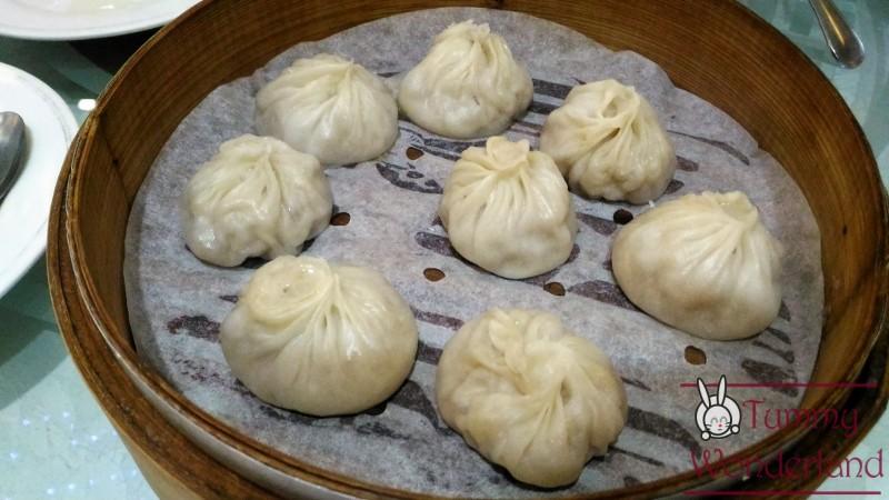 tao-yan-xiao-long