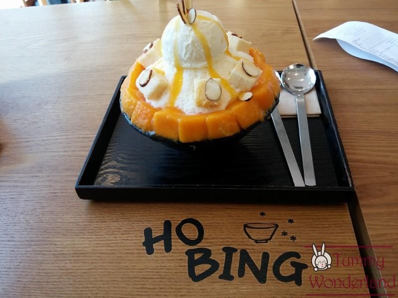 hobing-800x600